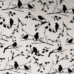 Tissu molleton jogging Birdy