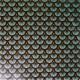 Tissu coton enduit Doucet  Bleu turquoise / Vert