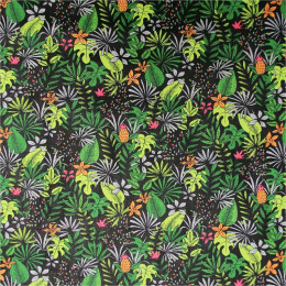 Tissu coton imprimé Pitaya