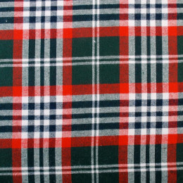 Tissu écossais Paul