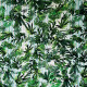 Tissu imprimé Natura Vert